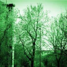 selinunte verde